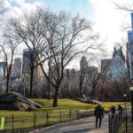 New York, una mela sempre più verde: da Central Park alla High Line