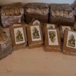 Roma. Oltre 90 kg. di droga sequestrata. La Polizia di Stato arresta 41 corrieri
