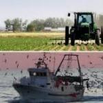 UE, agricoltura e pesca, passa il piano da 30 milioni