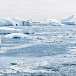 Al Polo fa caldo, +38 in Siberia