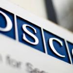 Ispettori OSCE per le elezioni USA, ridotto il numero degli osservatori
