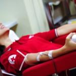 La Croce Rossa lancia la campagna #donachetitorna