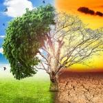 Green Economy e sviluppo sostenibile al Thinking Green di Taormina